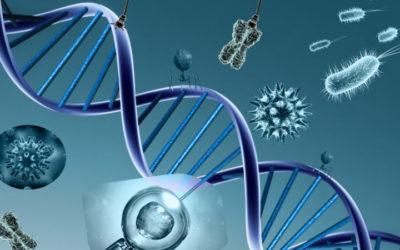 Estudo genético do cancro da mama reduz necessidade de quimioterapia