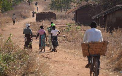 Representante da OMS em África defende necessidade de qualificar a medicina tradicional