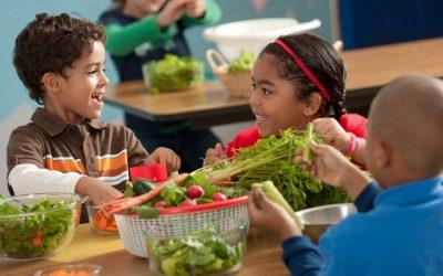 Distribuição de leite, fruta e legumes recomeça nas escolas da UE