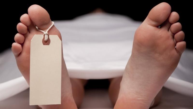 Faculdade de Medicina do Porto recebe 12 a 15 cadáveres por ano para investigação