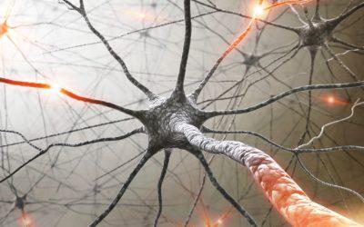 Aprovado primeiro tratamento oral para a Esclerose Múltipla Surto-Remissão e Secundária Progressiva