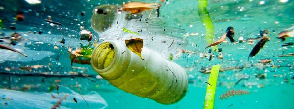 Lixo a boiar no mar português preocupa biólogos