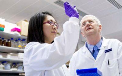 Investigadores desenvolvem nova tecnologia para rastreio de doenças cardiopulmonares