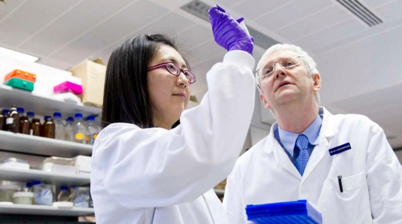 Universidade do Porto em projeto europeu para encorajar cientistas a partilharem bases de dados