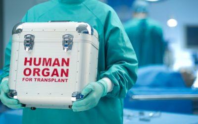 Transplante de órgãos em Portugal diminuiu em 2018