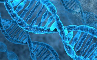 Cientistas tentam pela primeira vez edição genética em doente vivo
