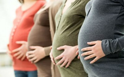 Profissionais de saúde são a fonte de informação em quem as grávidas e puérperas mais confiam