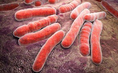 Estudo diz ser necessário melhorar a prevenção da tuberculose nos hospitais
