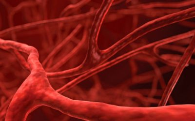 Venetoclax em combinação com rituximab recebe parecer positivo da EMA