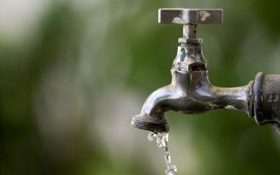 """Regulador garante que água da torneira em Portugal é de """"confiança"""""""