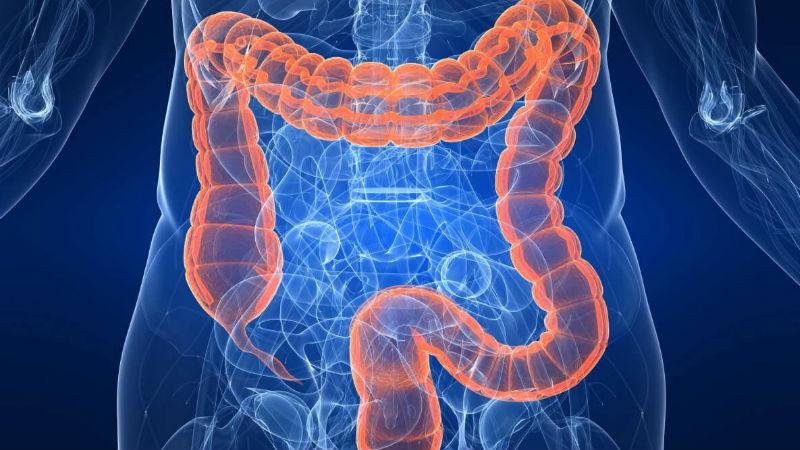 Fármacos para doenças inflamatórias do intestino vedados a doentes do privado