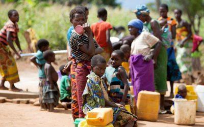 Moçambique: recurso a novos tipos de batata-doce no combate à desnutrição
