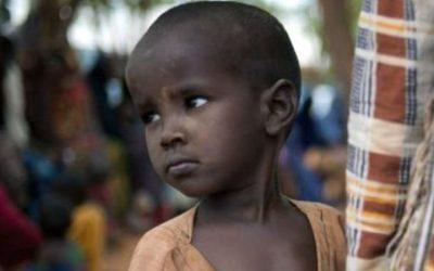 Organização Mundial da Saúde está sem fundos para trabalhar na Somália
