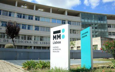 Cientistas portugueses identificam mecanismo molecular com potencial para fármacos contra tuberculose