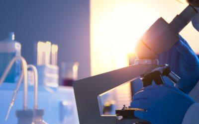 Cerca de 6.500 genes funcionam de forma diferente em homens e mulheres