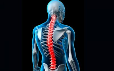 Ortopedista português lança livro para combater dores nas costas