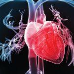 CTO, APIC, cardiologia
