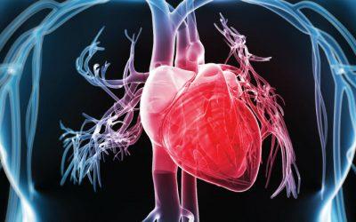 Criada tecnologia para avaliar funcionamento do coração