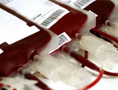 Governo vai rever critérios de exclusão de dadores de sangue por comportamento sexual