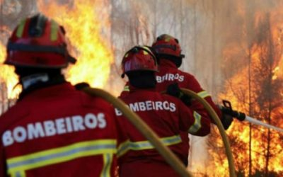 Investigadores vão avaliar exposição dos bombeiros à poluição atmosférica