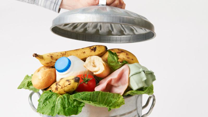 Nova plataforma simplifica a doação de alimentos e combate o desperdício alimentar
