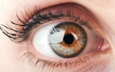 Voretigene neparvovec recebe parecer positivo da EMA para o tratamento de doenças hereditárias da retina