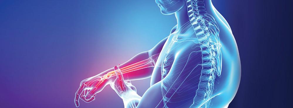 Instituto do Porto participa na criação da primeira sonda de diagnóstico precoce da osteoartrite