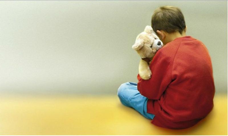 Associação de cães de assistência alarga oferta a crianças autistas