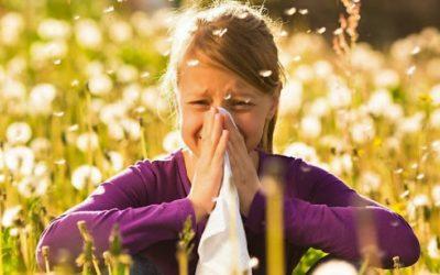 Pólenes e mais pólenes: alerta no país até ao final do mês