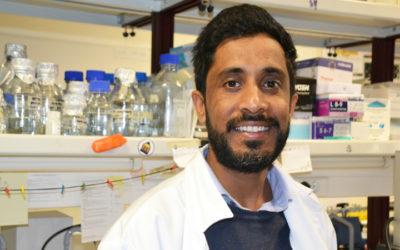 Investigador da Universidade do Algarve recebe bolsa da Federação Europeia de Bioquímica