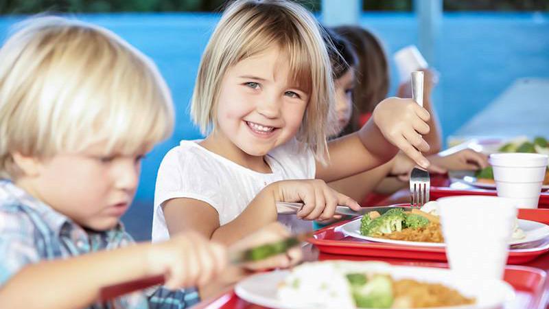 Estudo alerta que metade das crianças europeias não atinge potencial cognitivo por falta de iodo
