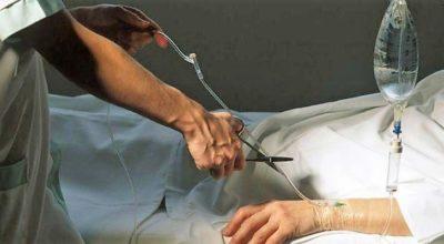 Investigadores pedem mais tempo para realizar estudos que sustentem eutanásia