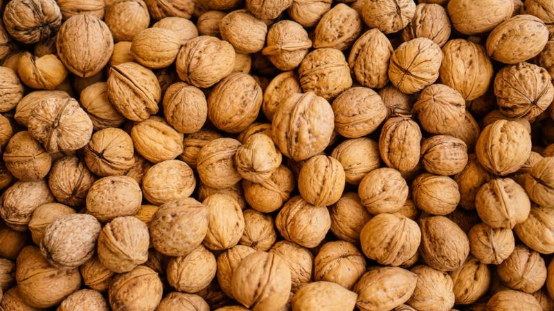 Comer nozes pode reduzir risco cardiovascular nos diabéticos