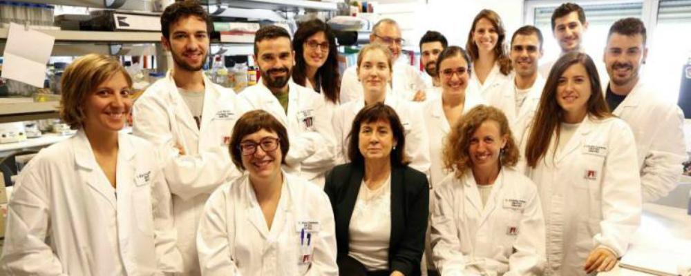 Terapia Genética consegue reverter diabetes tipo II em laboratório