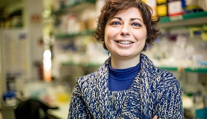 """Cientistas do Instituto Gulbenkian descobrem como as células geram """"antenas"""" diferenciadas"""
