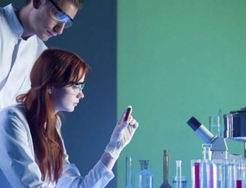 APCL, SPH e Gilead atribuem bolsa na área das neoplasias de células B maduras