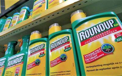 """Farmacêutica Bayer garante que glifosato é """"seguro e não cancerígeno"""""""