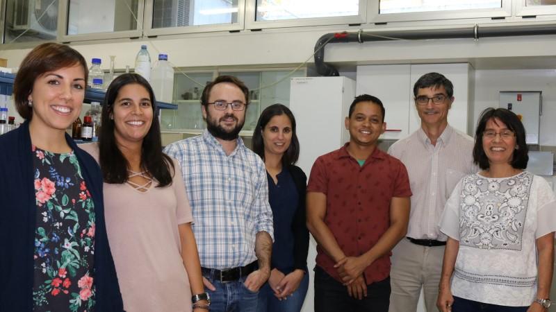 Investigadores de Coimbra desenvolvem macromoléculas para eliminar bactérias em  ambiente hospitalar