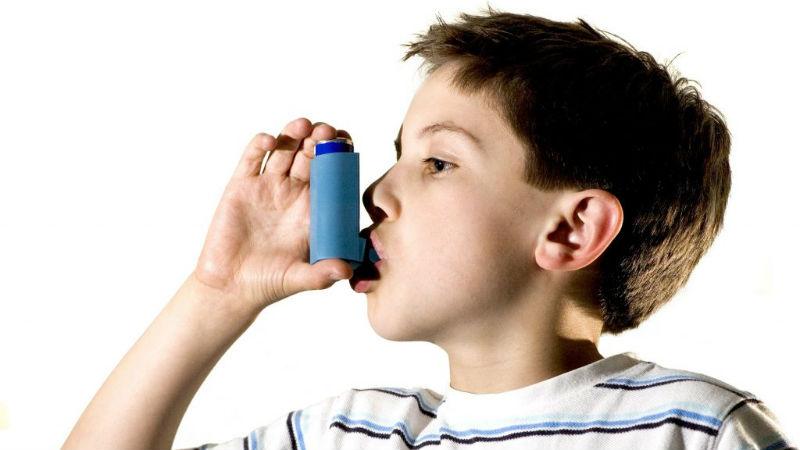 Substâncias presentes no ar das escolas podem potenciar asma e obesidade, conclui estudo