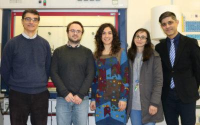 Cientistas desenvolvem tubo-guia biodegradável para regeneração de nervo periférico