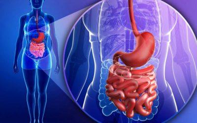 20% dos doentes com Doença Inflamatória do Intestino têm anemia
