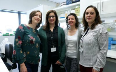 Ferramenta ibérica contribui para o diagnóstico precoce do Alzheimer