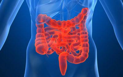 Imunosupressores são viáveis para pacientes com historial de cancro