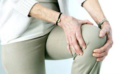 Projeto vencedor procura colmatar a falha existente na prevenção de osteoporose