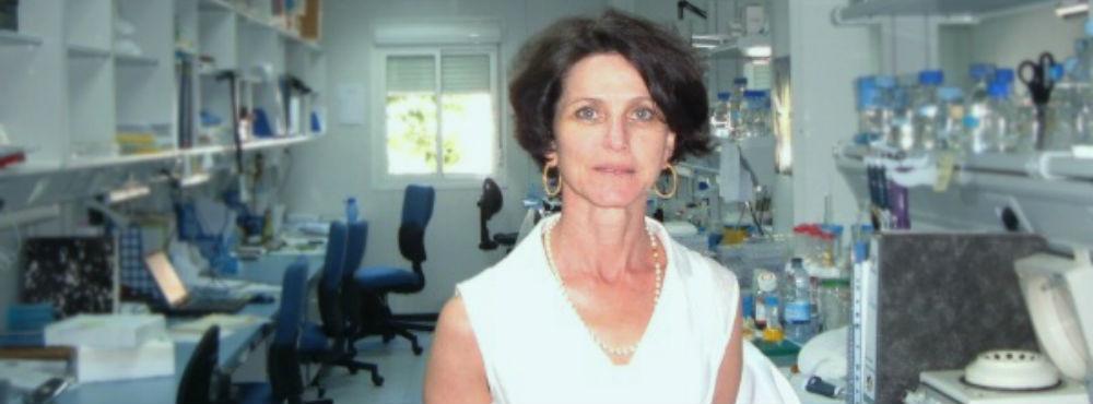 Descoberto novo tratamento para impedir progressão de Alzheimer