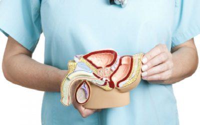 Novo tratamento para o cancro da próstata metastático chega ao SNS