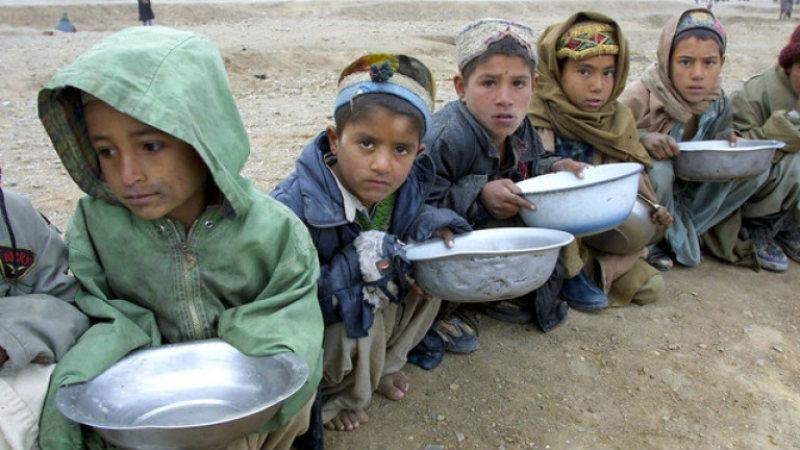 Fome afetou mais de 821 milhões de pessoas em 2018