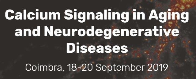 "Workshop ""Calcium Signaling in Aging and Neurodegenerative Diseases"""