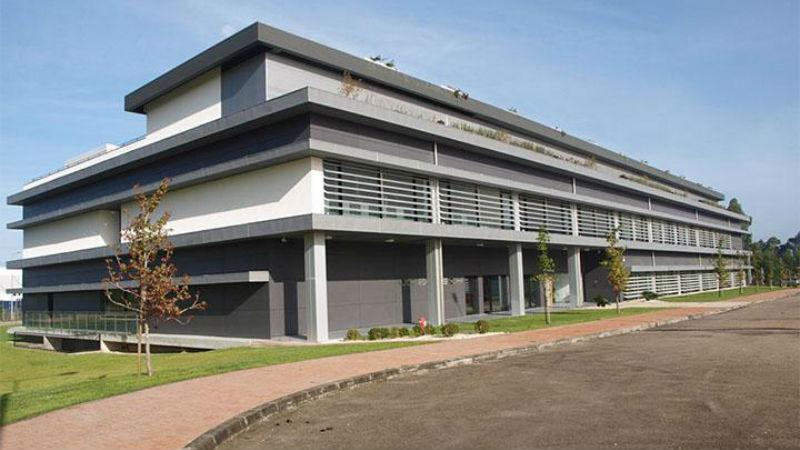 Decifrado em Coimbra mecanismo de regulação do desenvolvimento do sistema nervoso