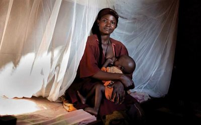 Malária: Combate pode evitar quatro milhões de mortes até 2030